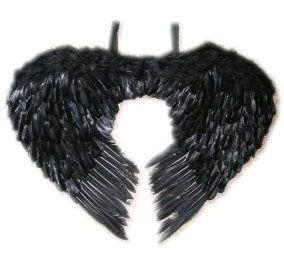 Engelenvleugels zwart