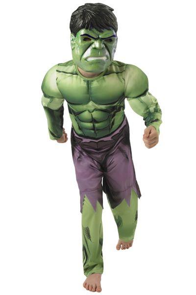 Hulk verkleedkleding muscle chest kind