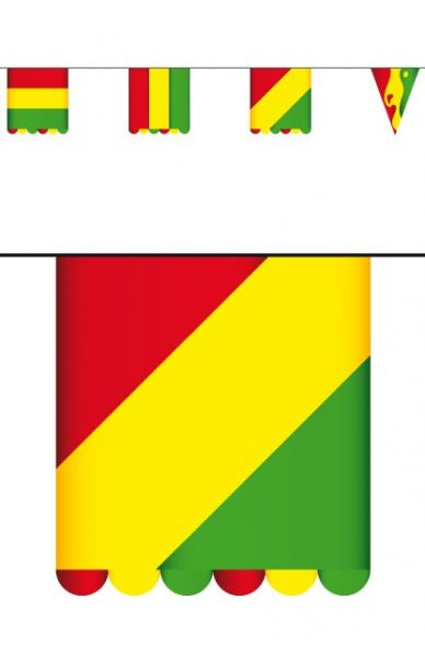 Carnavals Vlaggenlijn rood geel groen van karton